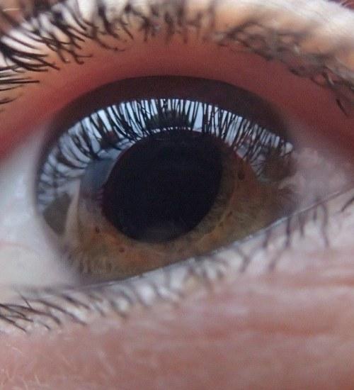 Fakty i mity na temat noszenia soczewek kontaktowych